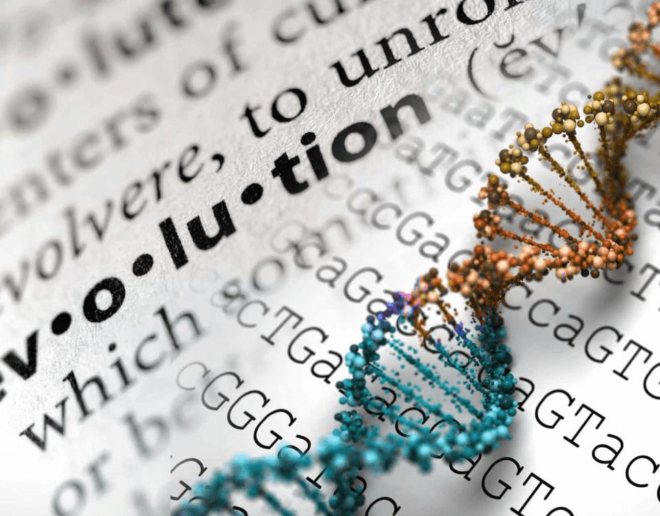 mücevher ve pırlanta üretiminde evrim gerçekleşecek